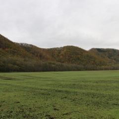 周囲の山々から秋が始まる